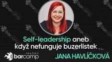 Self leadership aneb když nefunguje buzerlístek